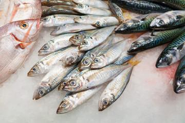 Pesce fresco pescato su un banco al mercato