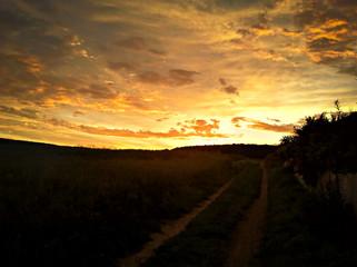 Sonnenaufgang an einem Getreidefeld