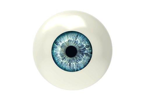 one eyeball isolated on white