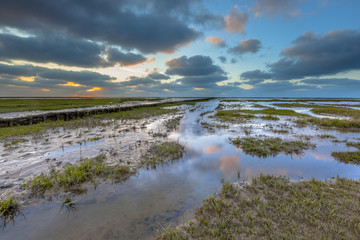 Wall Mural - Reclaimed Land at waddensea