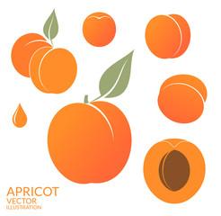 Apricot. Set
