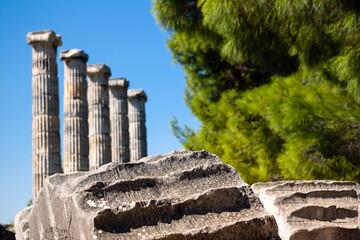 Ancient columns, Temple of Athena ruins in Priene, Turkey