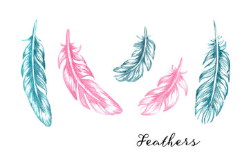 Hand drawn blue and pink watercolor feathers set for your design