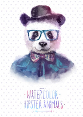 Vector illustration of panda portrait in sunglasses and pullover