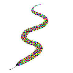 snake color vector
