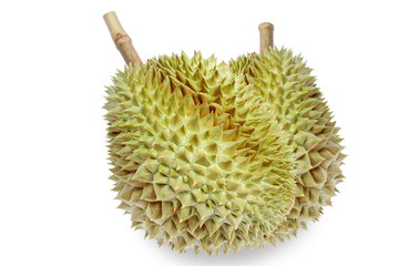 Fresh durian isolated on white background.King of fruits.