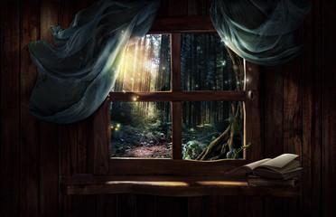 Afbeeldingsresultaat voor magical window