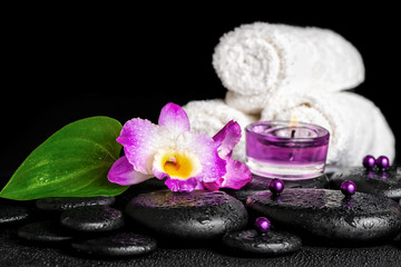 spa concept of orchid flower, zen basalt stones with drops, purp
