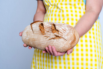 delicious self made breadin womans hands