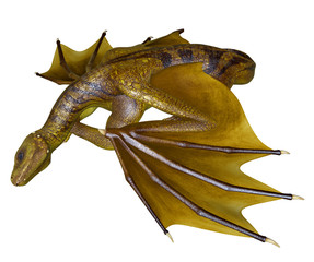 Yellow Dragon - 3D rendered fantasy creature