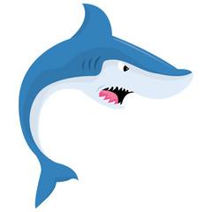 Cartoon Mean Shark
