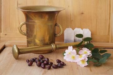 Medicinal plants - eglantine