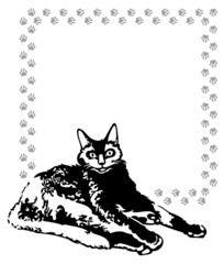 Vector frame with black cat and cat's footsteps