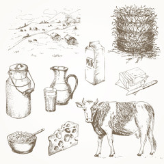 Milk products and cow