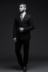 Full-length portrait of handsome stylish man