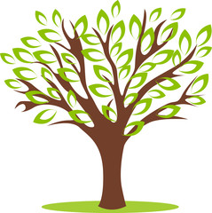 Vector illustrated tree with beautiful green leafs.