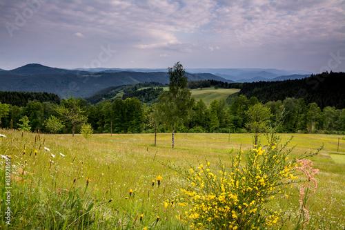 Fototapete Schwarzenbruch im Schwarzwald
