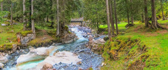 River and pine forest in Swiss Alps on view panoramic .