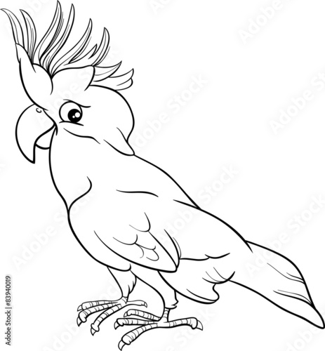 Cockatoo Parrot Coloring Page Stock Image And Royalty Free Vector