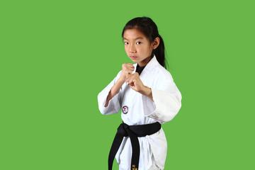 Taekwondo Girl 2