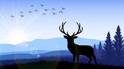 Silhouette of a deer standing on the time of morning. Vector