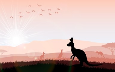 Silhouette a kangaroo the feeding in the bright sunset. Vector