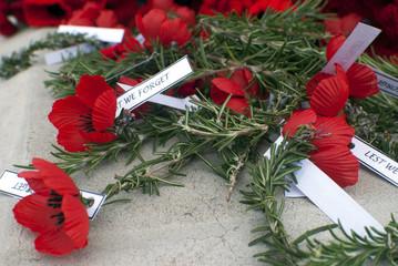 Anzac day remembrance day poppy