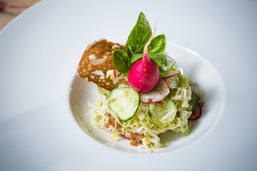 Salad from cabbage, herbs, cucumber and radish in bowl.
