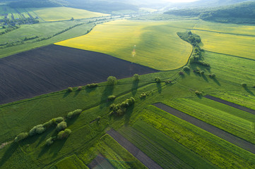 Wall Murals Air photo Aerial view on yellow fields