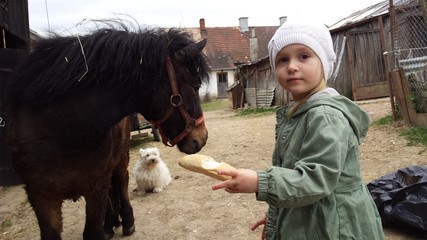 Petite fille avec cheval
