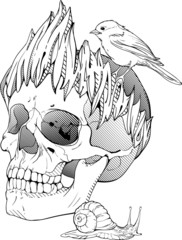 black and white illustration with skull, bird and snail