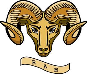 A  ram head