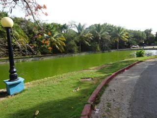 Lac du parc Josone