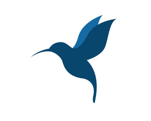 Hummingbird v.2