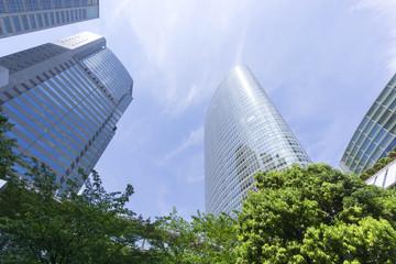 高層ビル群と新緑