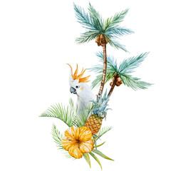 Watercolor tropical palm