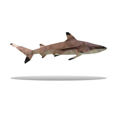 shark polygon abstract isolated on white background vector