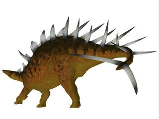 Kentrosaurus Dinosaur Tail