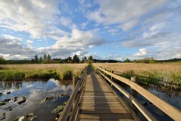 Hovander Homestead Park in Ferndale, Washington