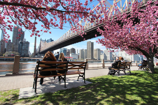 New York City / Roosevelt Island