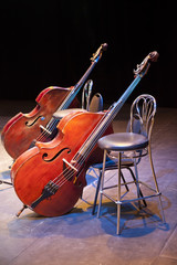 Contrabasses on a scene of a concert hall