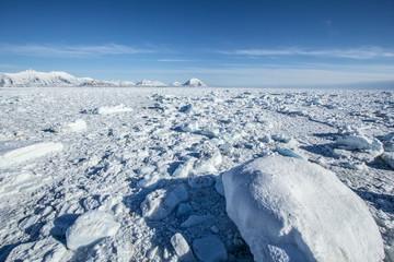 Arktyczna wiosna na południowym Spitsbergenie