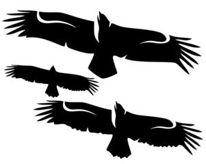 flying eagles set