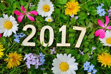 2017 Jahr Silvester Neujahr