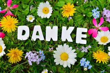 Danke Text auf Blumen Wiese