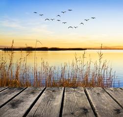 Canvas Prints Honey el lago al amanecer