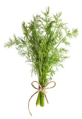 Dill herb isolated on white background. Food ingredient. Condime