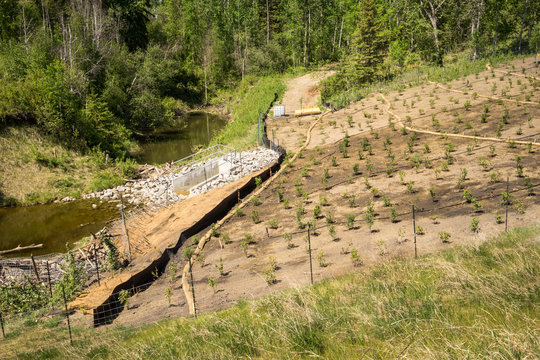 Erosion control on a slope with straw sock catch, silt fence, st