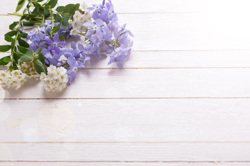 Background with  blue  and white  flowers