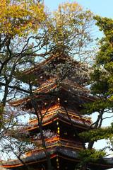 Japanese Pagoda within trees at Ueno Park, Tokyo.